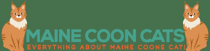 Maine Coon Admirer